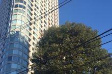 随时都能看见漫画里的蓝天和大楼