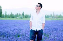 趁夏天还在,去看熏衣草吧!