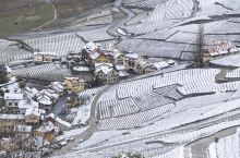 瑞士拉沃,雪后的梯田式葡萄园有多美?