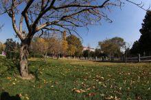 碧沙岗公园集文化、娱乐、休闲、园林观赏为一体,每年接待游客约200万人。公园绿化覆盖率己达94.3%