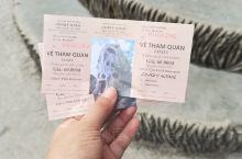 大叻疯屋子 前越南总统女儿设计的旅游似酒店 不适合居住 只适合景点游玩 门票6万盾 照出来照片很好看