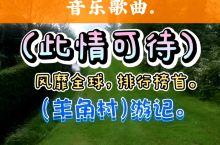 羊角村游记,配乐(此情可待)中文版