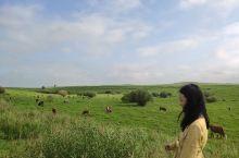 呼伦贝尔大草原~相当大!