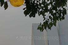 武汉探店|仰头见明月 手可摘星辰