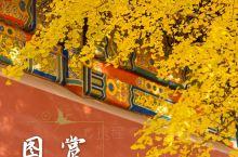 北京赏秋图鉴