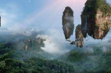 """三千奇山""""张家界国家森林公园"""""""