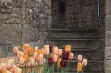 愛丁堡的春天