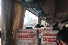 乾县·咸阳 服务区