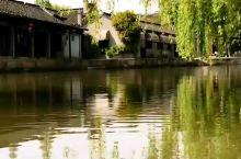 西塘四季变换的美。