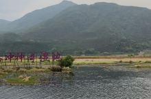 腾冲北海湿地:湖上草毯任君行?