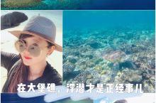 昆士兰的正确打开方式 去大堡礁浮潜吧!