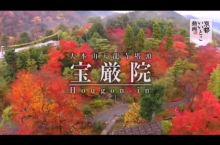 京都赏枫名所 - 宝严院