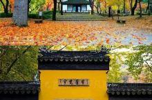 丨爬吴中第一山 ~ 在秋天,赏枫叶、拍照片是一件多么诗意的的事情。 苏州城西#天平山[地点]#,便是
