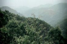 群山雾绕,连绵起伏。