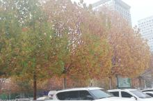 秋天美丽的景色