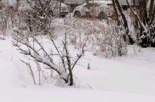 雪飘飘洒洒