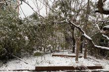 2021年燕郊第一场春雪