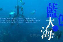关岛鱼眼公园的海底水族馆