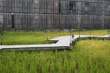 禾肚里稻田民宿拍照圣地