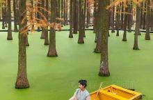 江苏旅游好去处 扬州绿野仙踪