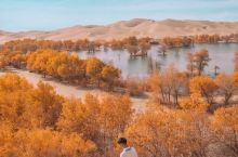 新疆超小众水上沙漠胡杨林,附出行攻略