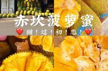 湛江|幸福路必吃的菠萝蜜