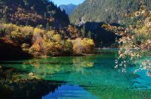 秋天去四川旅游,打卡这几个景点绝对值