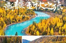 喀纳斯赏秋攻略 北疆最佳赏秋景色🍂