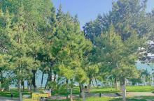 威海三大网红公园之海源公园