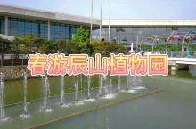 春意盎然 上海辰山植物园春游记
