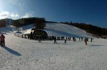 北海道 SNOW CRUISE ONZE