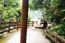 我在广东八乡山花海童话世界