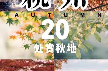 吐血整理杭州秋天最美的20个地方