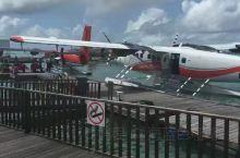 马尔代夫水飞机体验