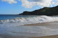 我见过很多美丽的大海,走过很多迷人的沙滩,最难忘的还是夏威夷欧胡岛上的桑迪海滩,这里很适合冲浪,不适