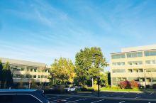 西雅图全球微软总部