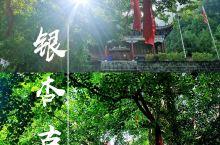 【西安周边】藏在秦岭中的千年银杏古寺
