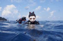 东南亚小众海岛推荐——马来西亚天鹅岛