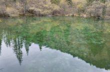 翡翠连理池