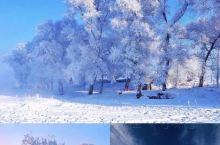 [Land]中国雪乡  雪乡旅游攻略哈尔滨旅游攻略北国风光美北国风光美,美在哈尔滨雪乡等小众绝美景