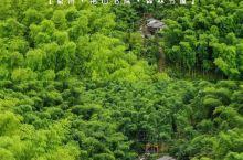 衢州民宿💕藏匿在绿野仙踪之中的隐士书屋