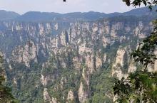 张家界国家森林公园一日游