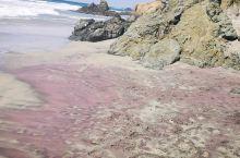 美西一号公路的紫色沙滩2
