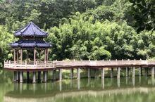 京明茶园引导的农业旅游由最初的观光、采摘等简单形式逐步向观光休闲、度假等高层次推进并发展,周边古风蕴