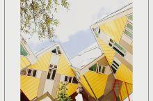 鹿特丹竟然有长成魔方的房子?