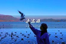 【泸沽湖】梦中的世外桃源,心中的白月光