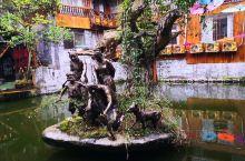 水塘中间的木雕,自然古朴。