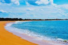斯里兰卡的希克杜瓦海滩,像世界上所有的海滩一样,都是椰风摇曳,海水湛蓝、沙子细腻。唯一不同的,这里沙