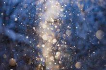梦幻的钻石尘丨美瑛町因有着像童话世界