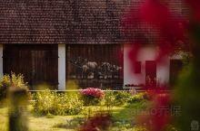 波兰木画文化